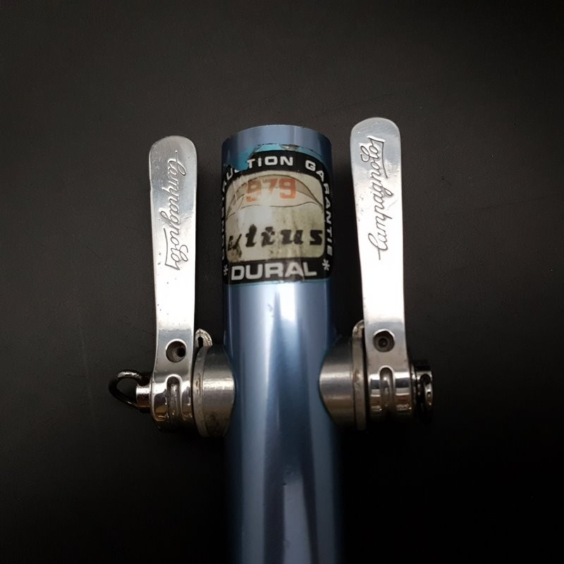 "Levers of speed ""CAMPAGNOLO TRIOMPHE"" (Ref 483)"