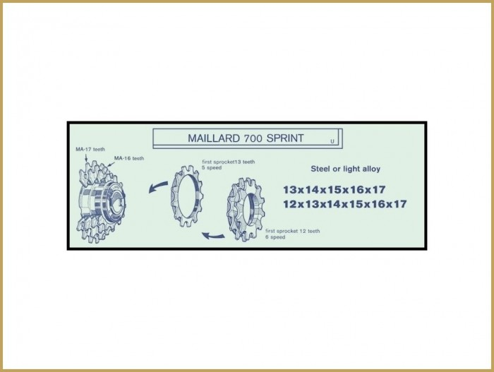 """Pinion NOS """"Maillard MA"""" 30d"""